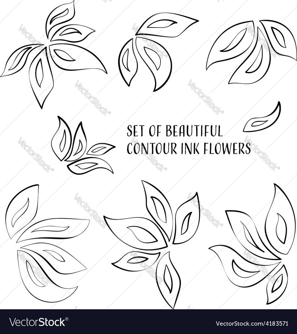 Contour ink flowers
