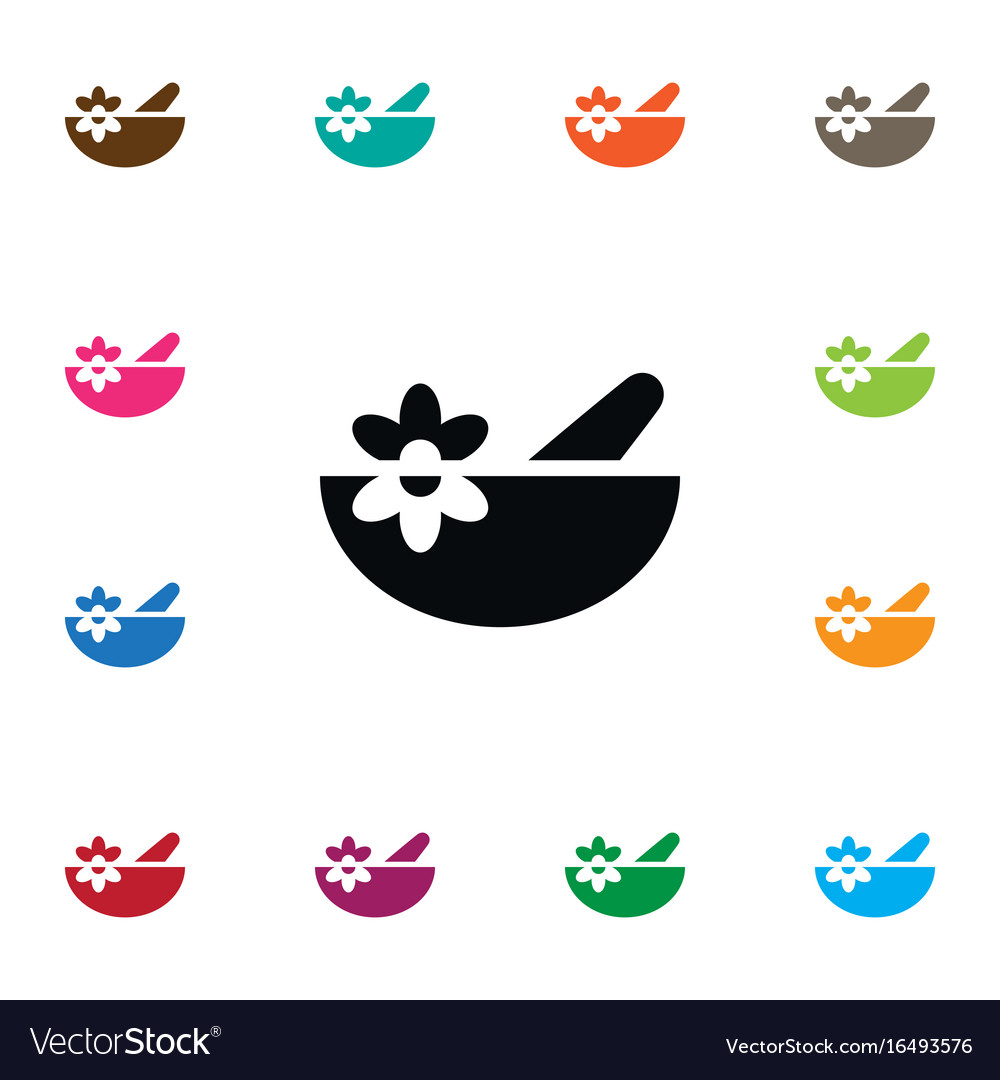 Isolated healthy food icon bowl element vector image