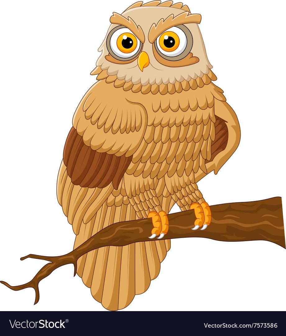 Cartoon owl sitting on the branch