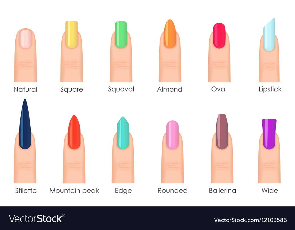 Nails shape icons set Types of fashion bright