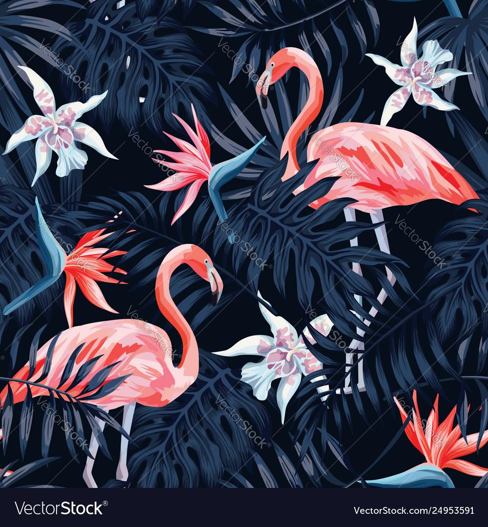 Flamingo strelitzia palm leaves dark background