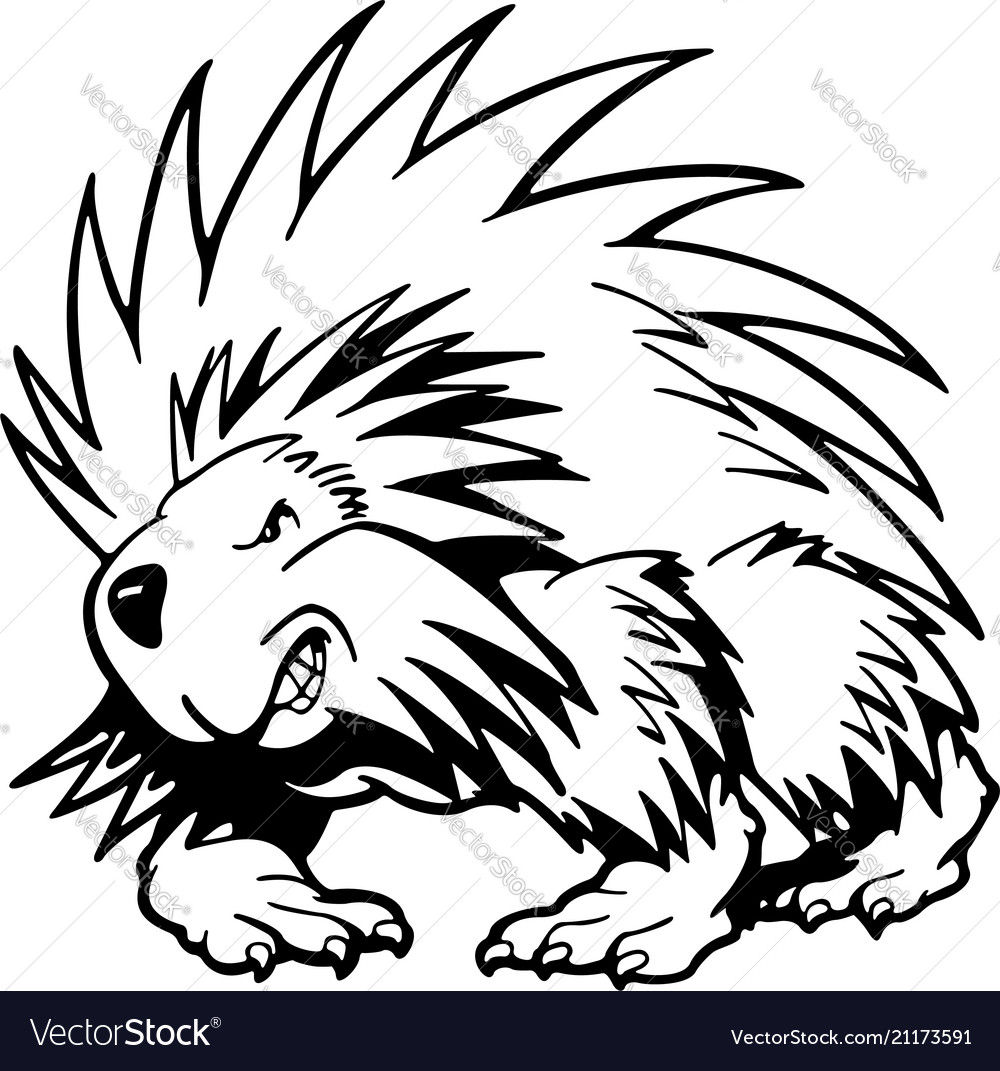 Hedgehog animal cartoon character