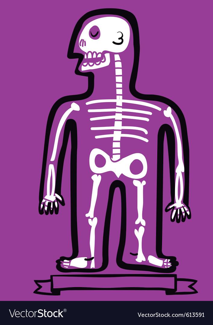 Human body bones royalty free vector image vectorstock human body bones vector image ccuart Choice Image