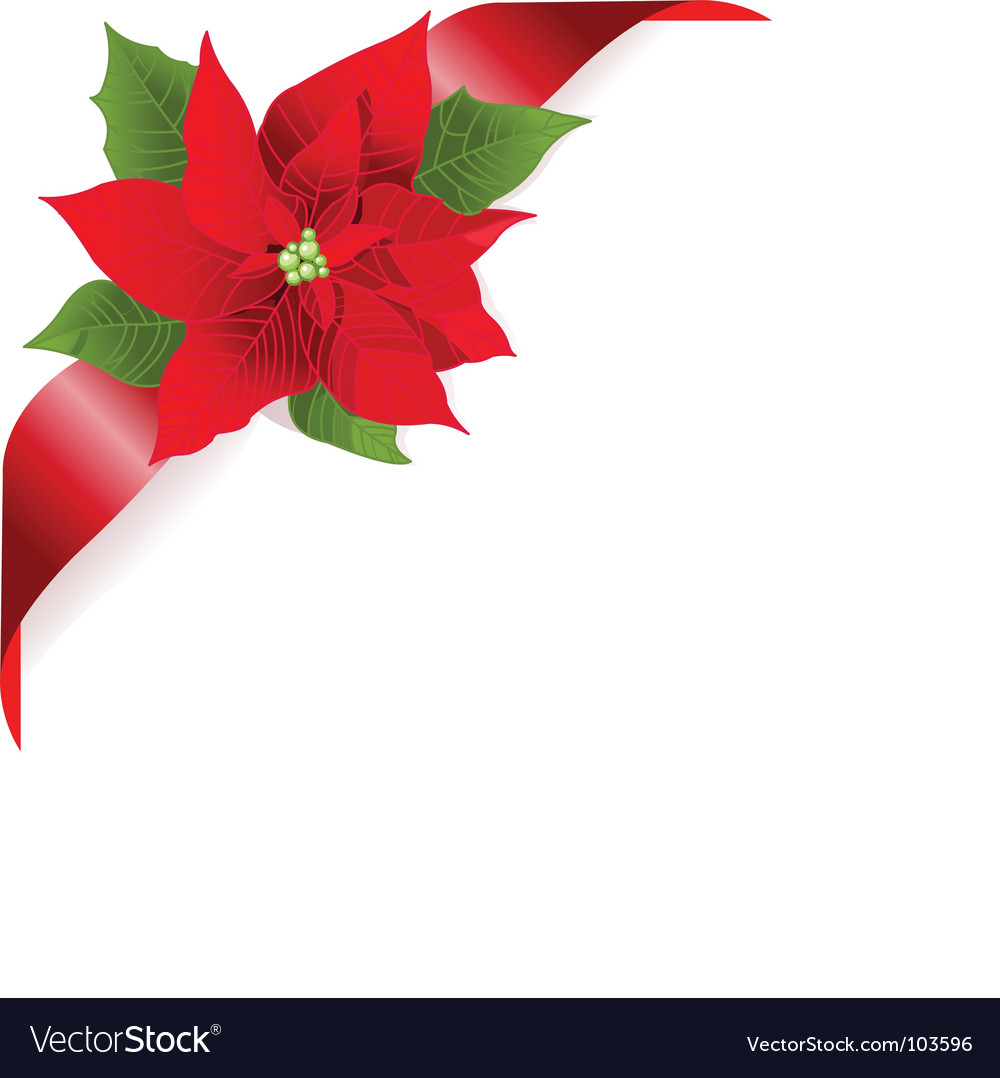 Red poinsettia vector image