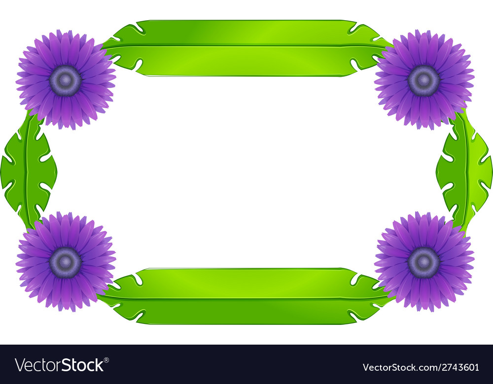 A border design with lavender flowers and green
