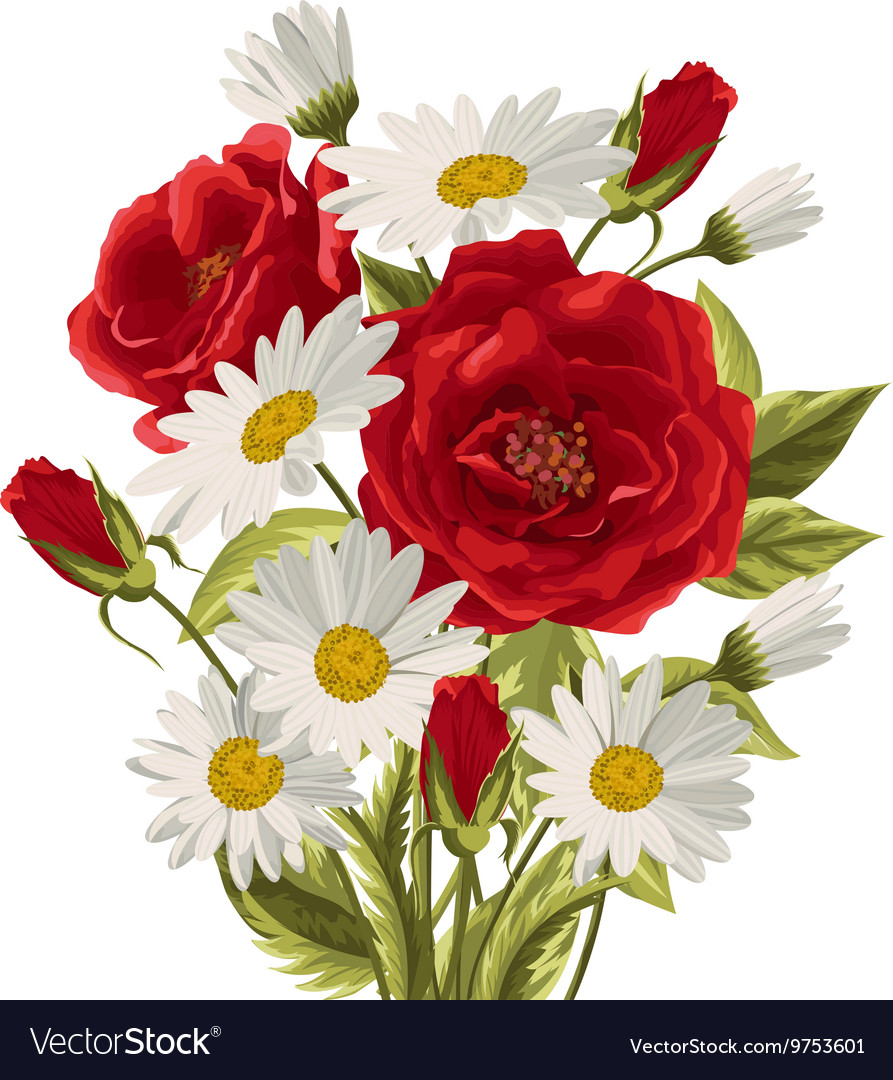 Beautiful White Daisies And Red Roses Royalty Free Vector