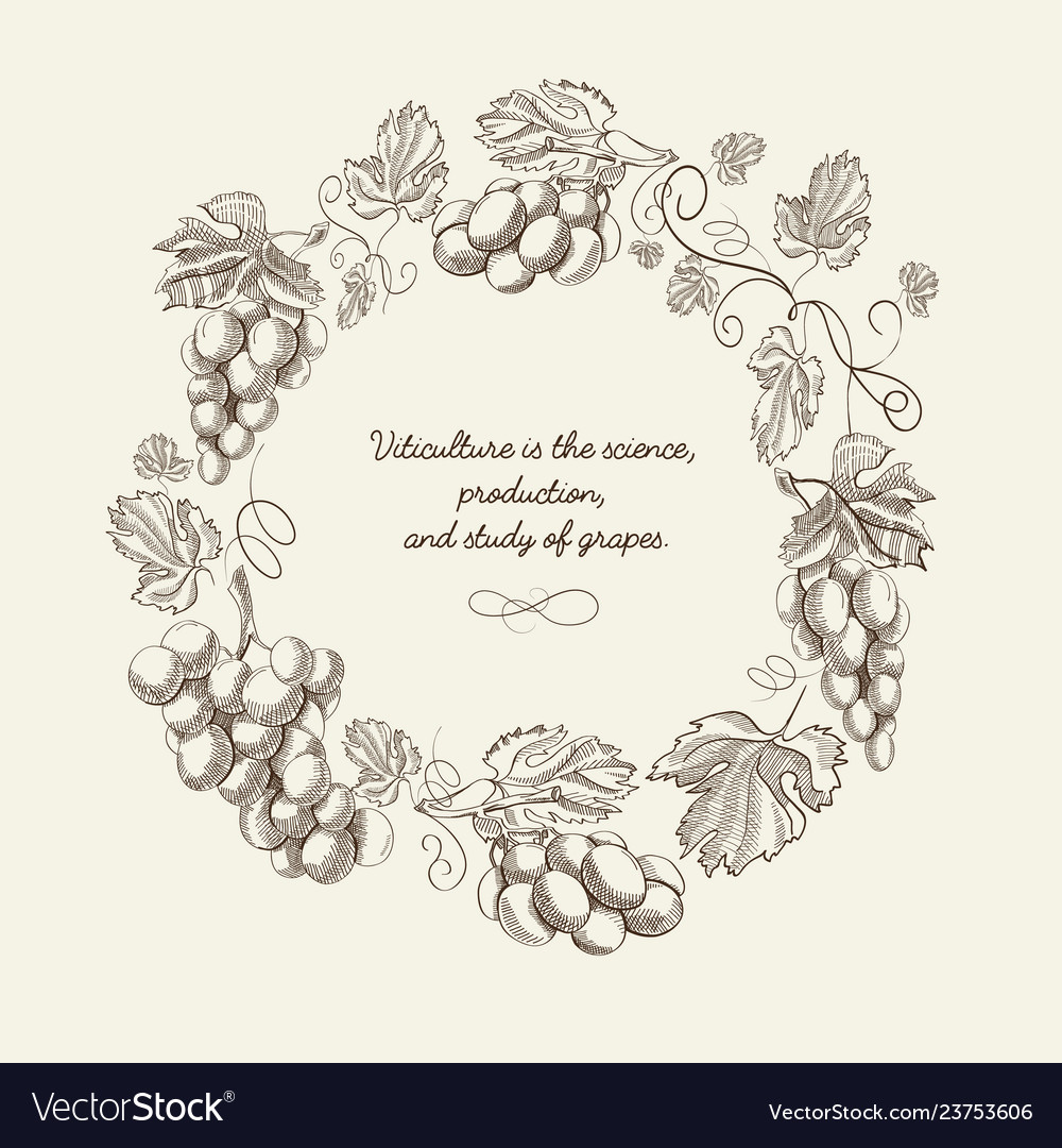 Abstract natural wreath vintage template