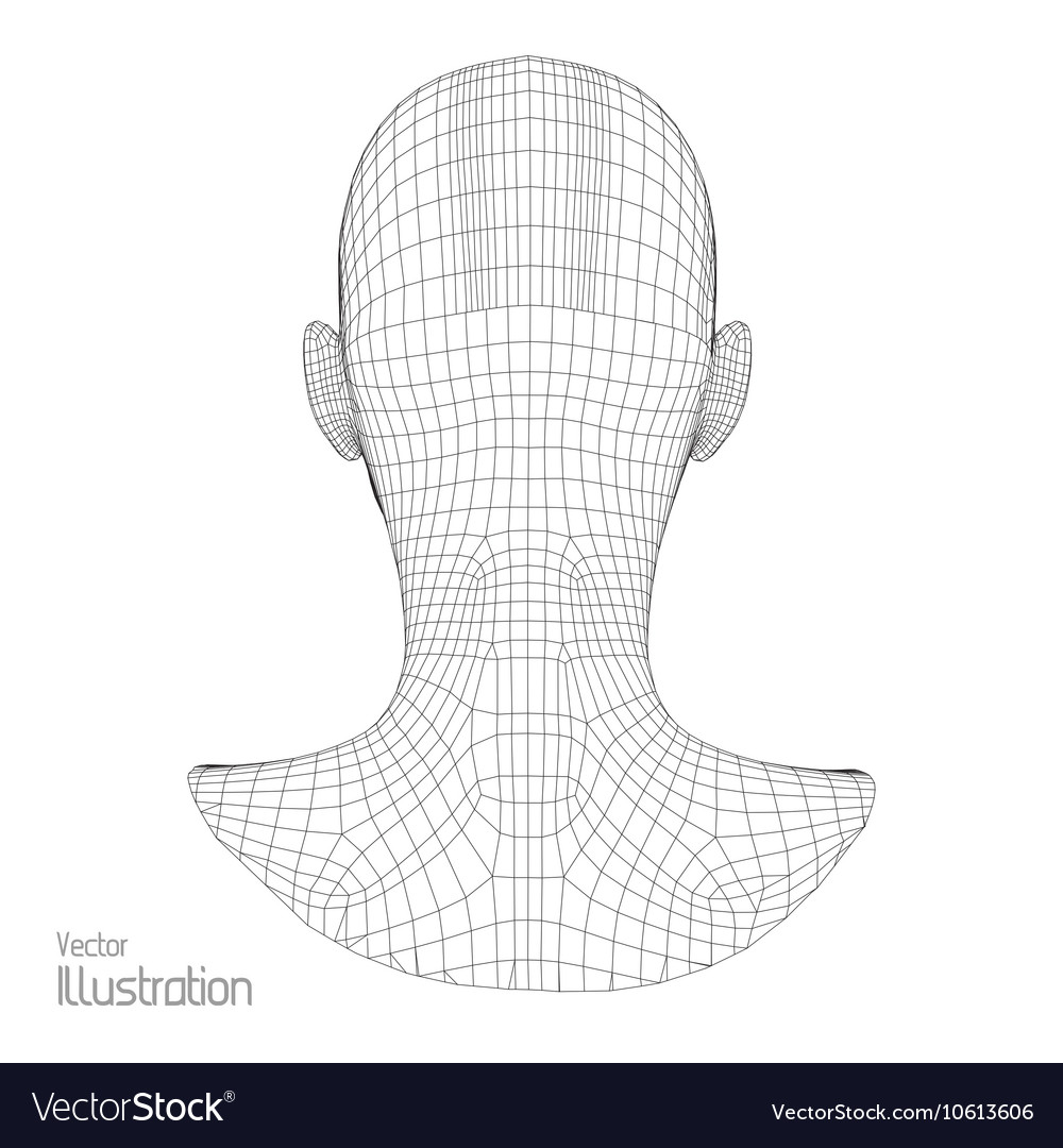 Head of the Person from a 3d Grid Human Wire