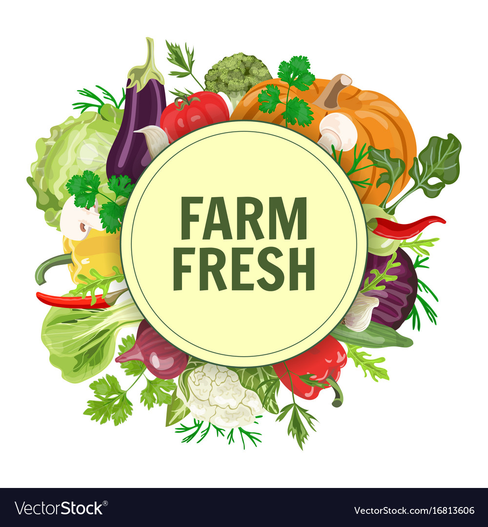Vegetables in circle vector image