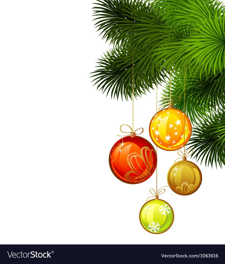 Christmas branch of fir tree