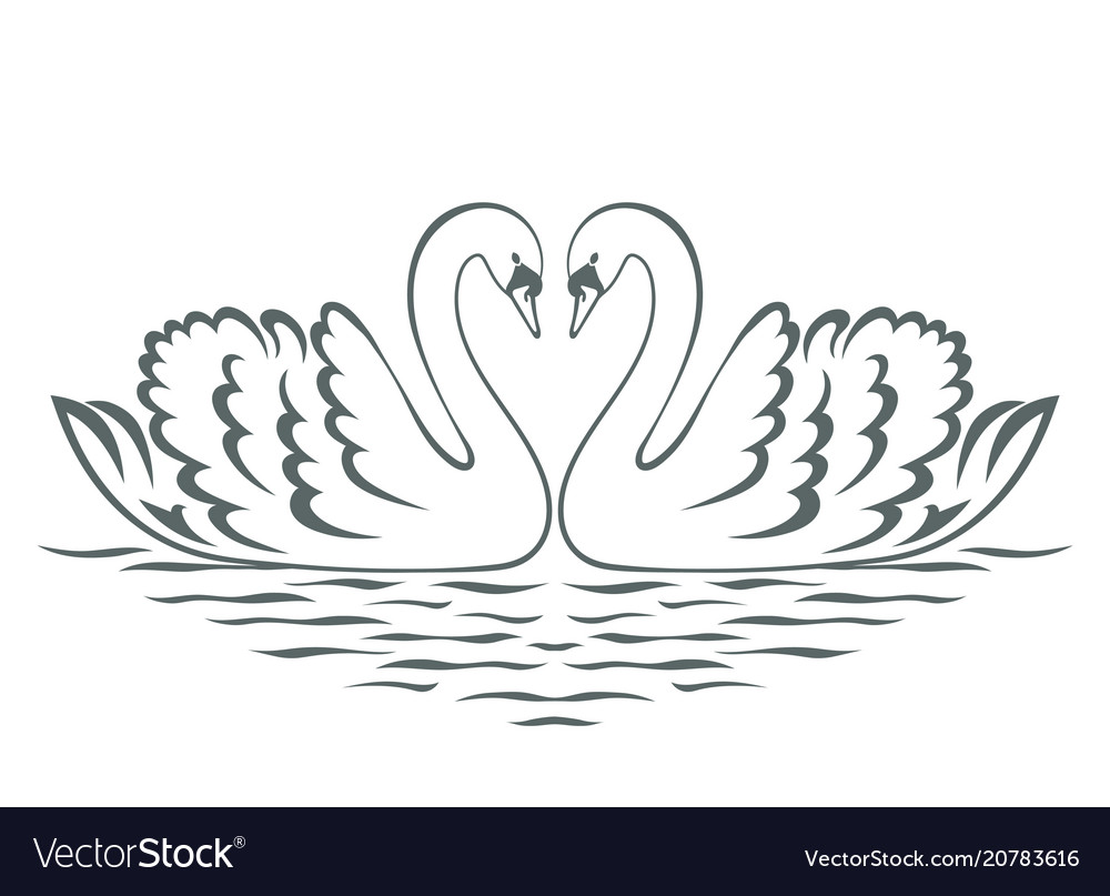 Swan couple silhouette vector image