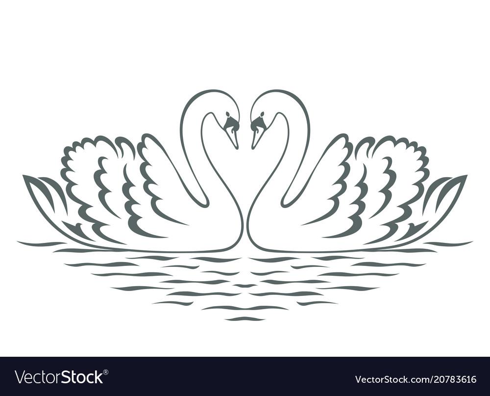Swan couple silhouette