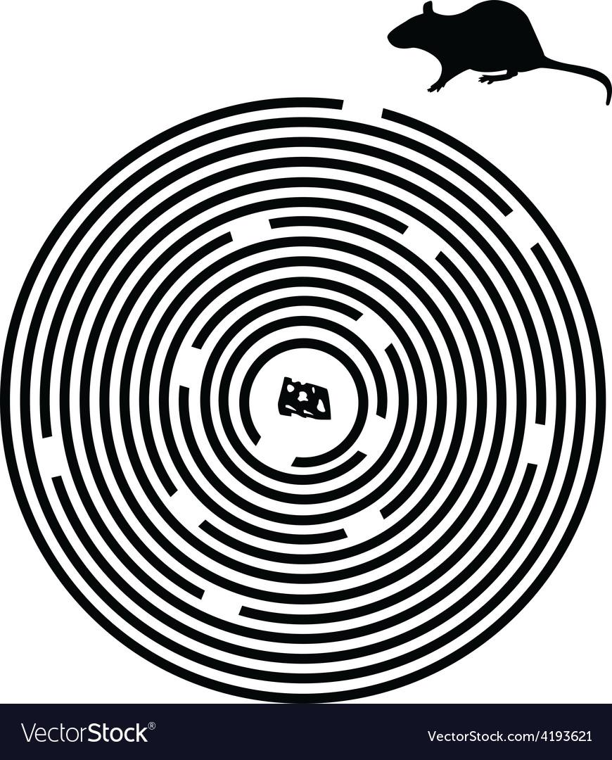 Black maze puzzle