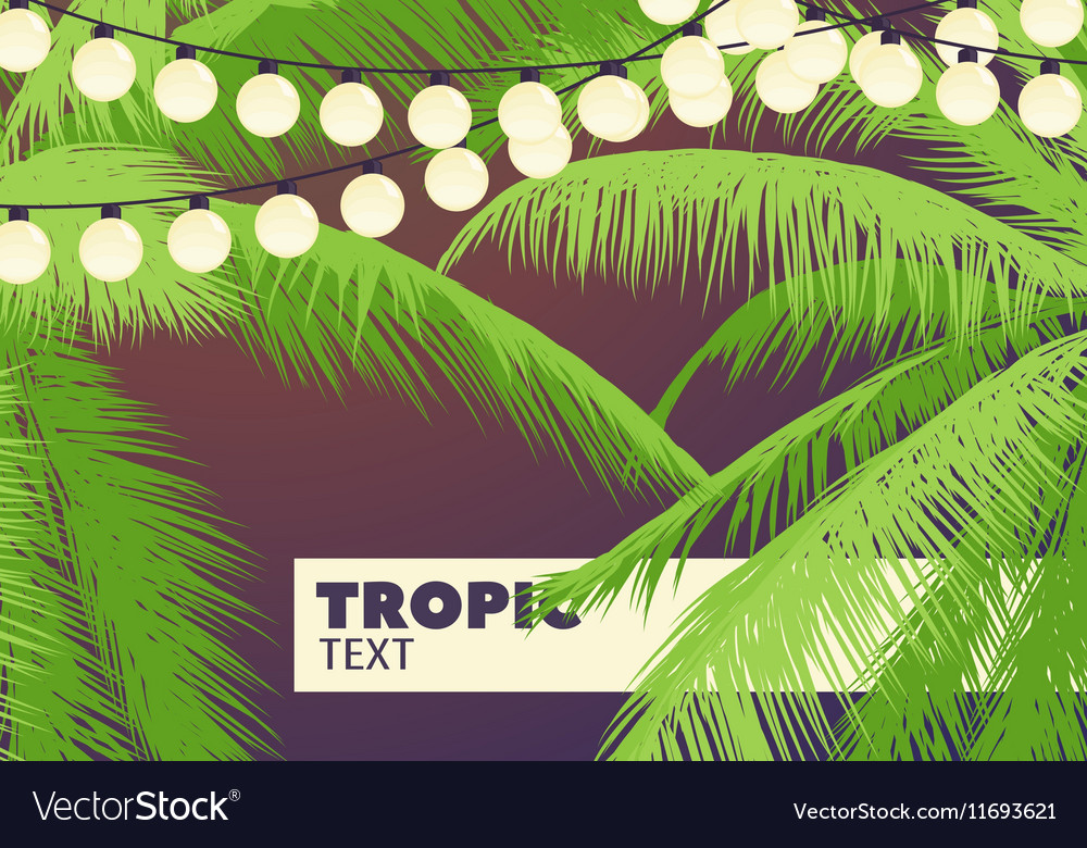 Palm trees with yellow garlands vector image