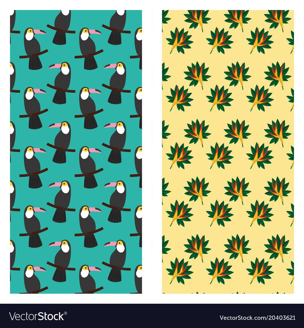 Tropical exotic toucan bird of paradise flower