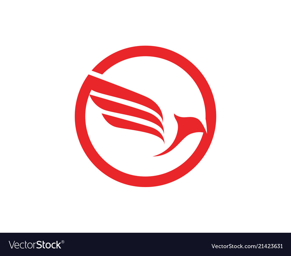 Airplane fly logo and symbols template