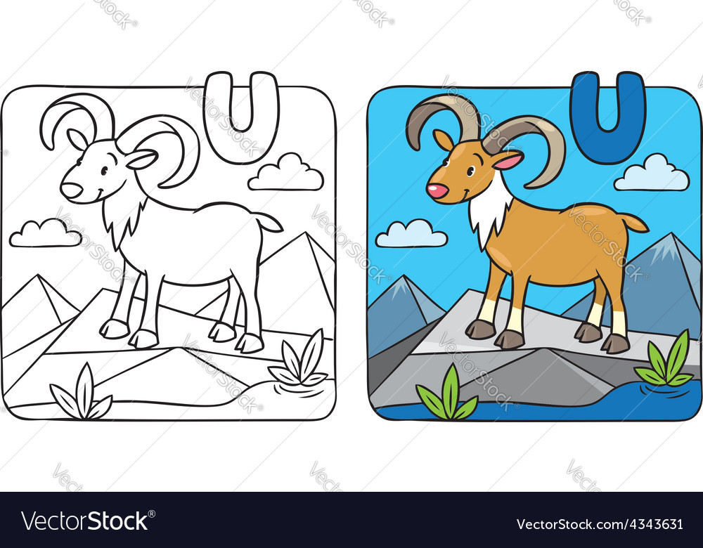 Coloring picture of funny urial Alphabet U Vector Image