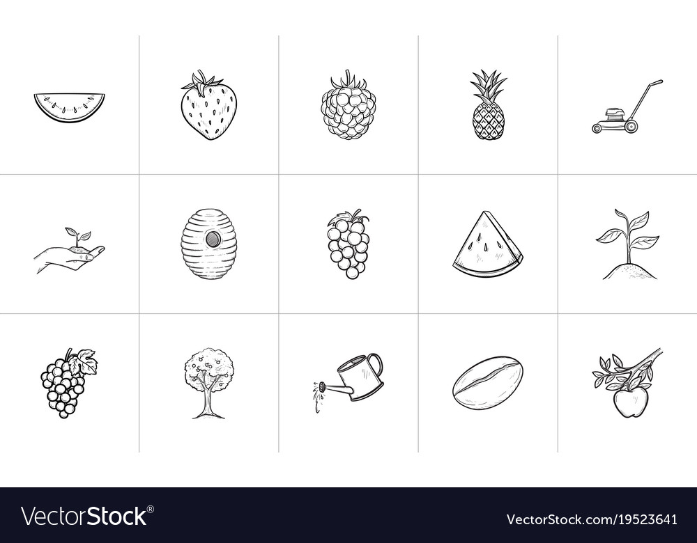 Agriculture food hand drawn sketch icon set