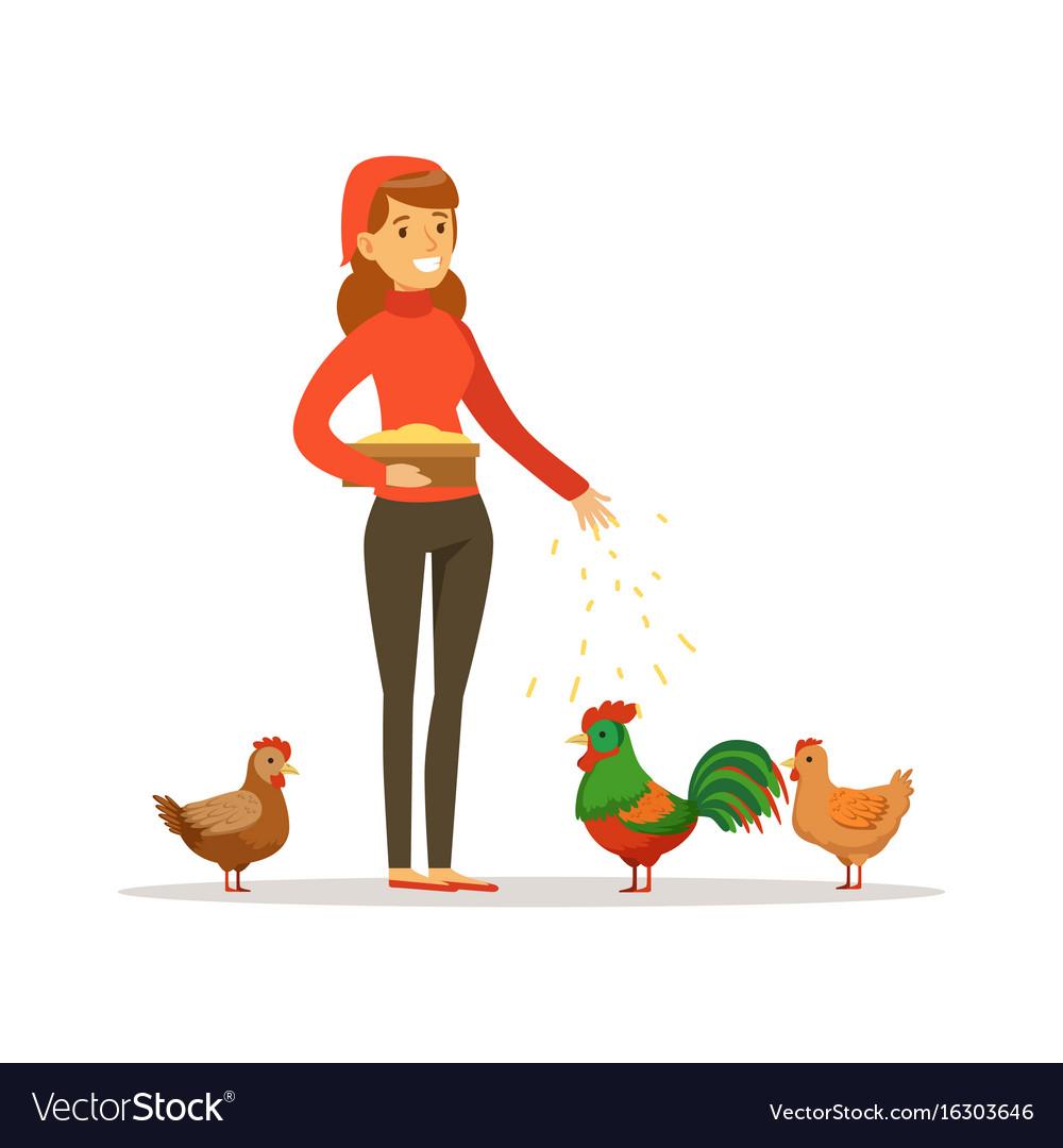 Farmer woman feeding chickens poultry breeding