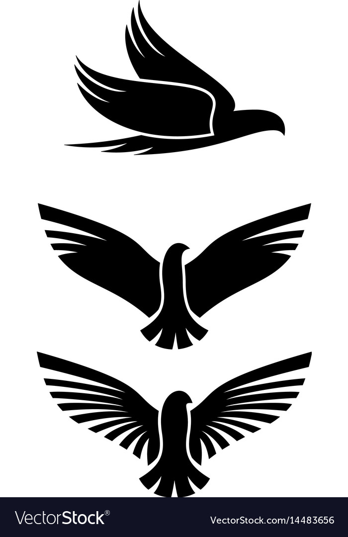 Bird silhouette on white background vector image