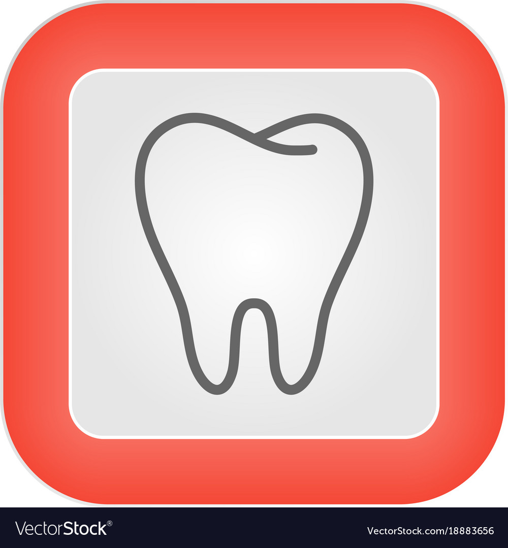 Human tooth stomatology icon in trendy thin line