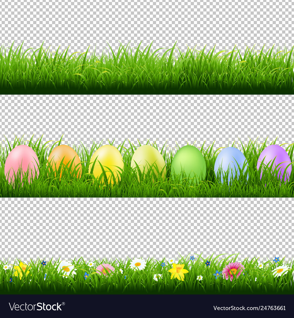 Green grass borders collection transparent