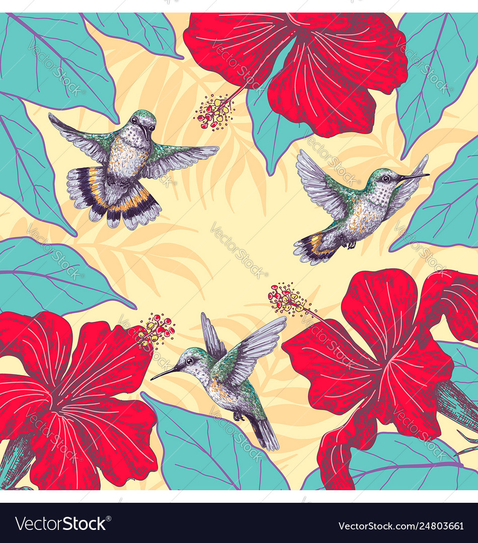 Tropical background with hibiscus and hummingbirds