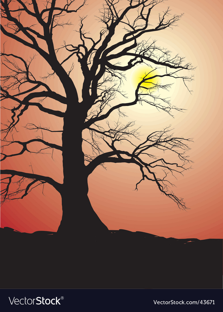 Silhouette Of An Old Oak Tree Vector. Artist: ard; File type: Vector EPS