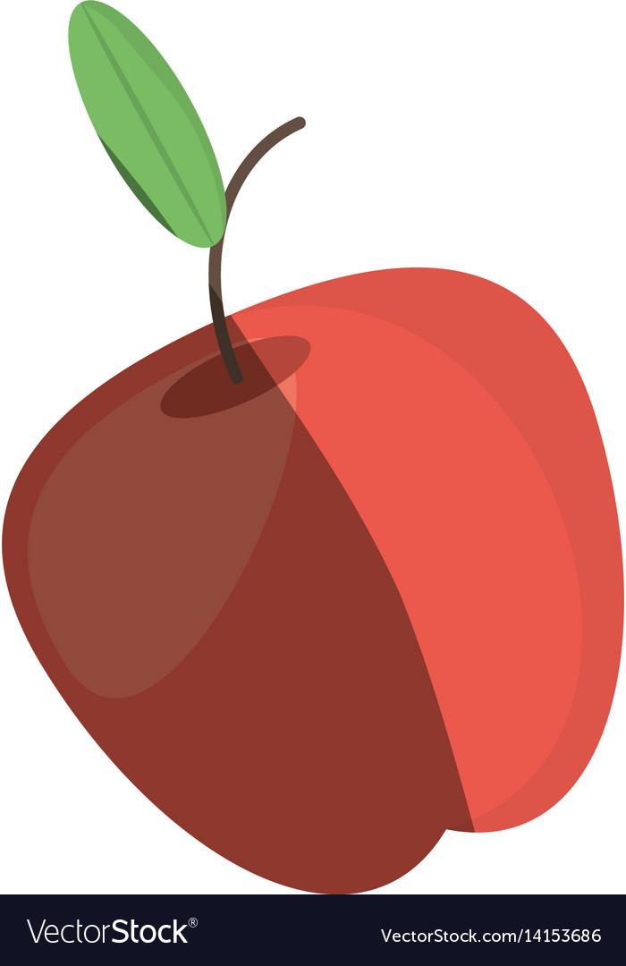 Apple fruit fresh shadow