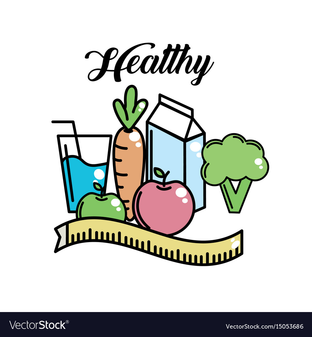 heathy food to fitness lifestyle activity vector image