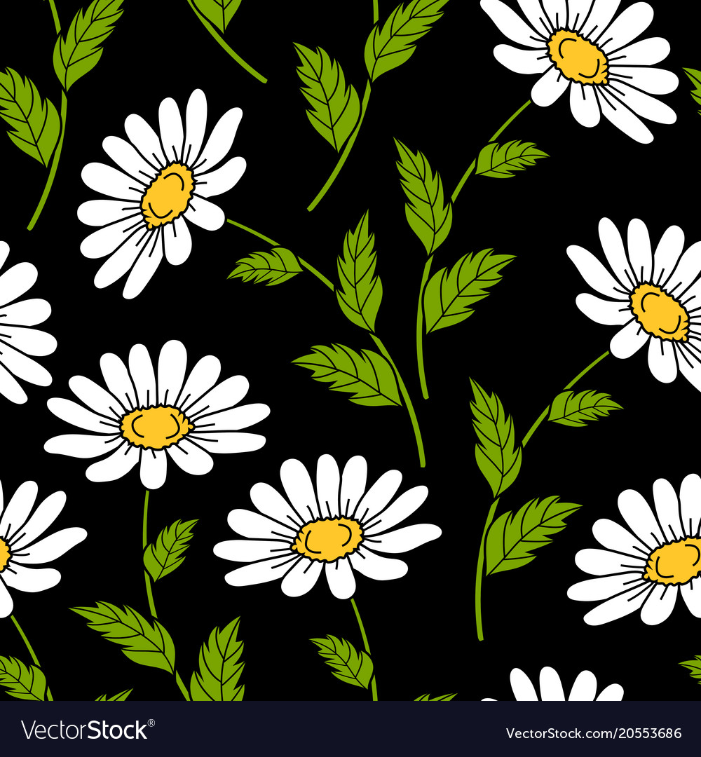 Seamless pattern with daisy flowers royalty free vector seamless pattern with daisy flowers vector image izmirmasajfo
