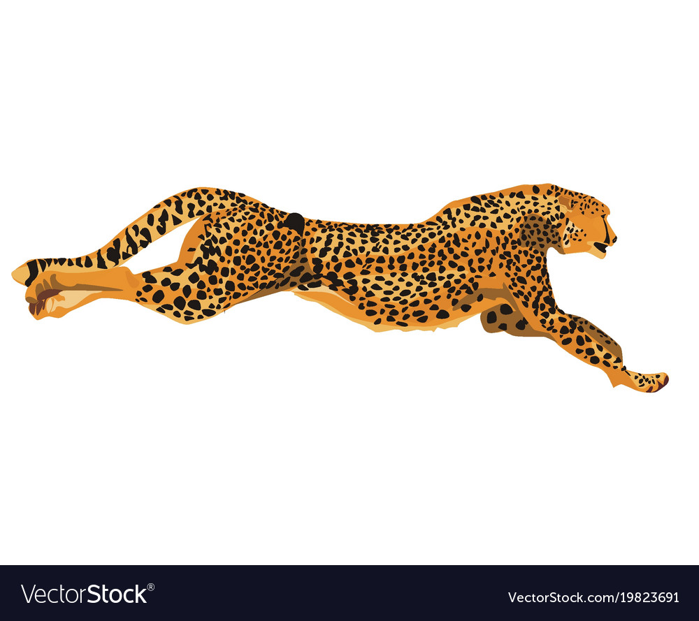 Running cheetah art