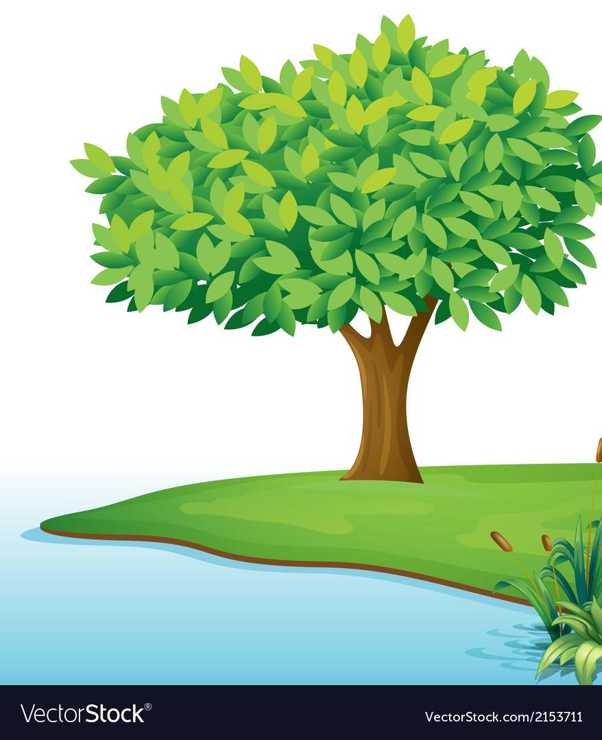 вот рисунок с деревом и водой концу десятилетия