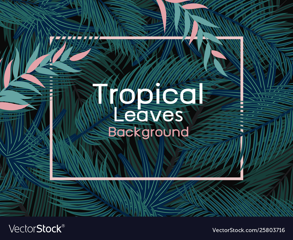 Tropical leaves with pink line frame