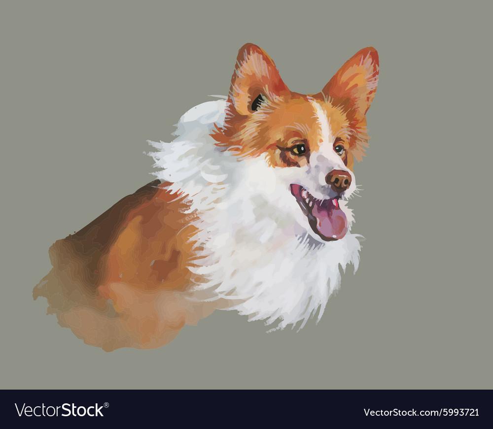 Welsh corgi pembroke Animal dog watercolor
