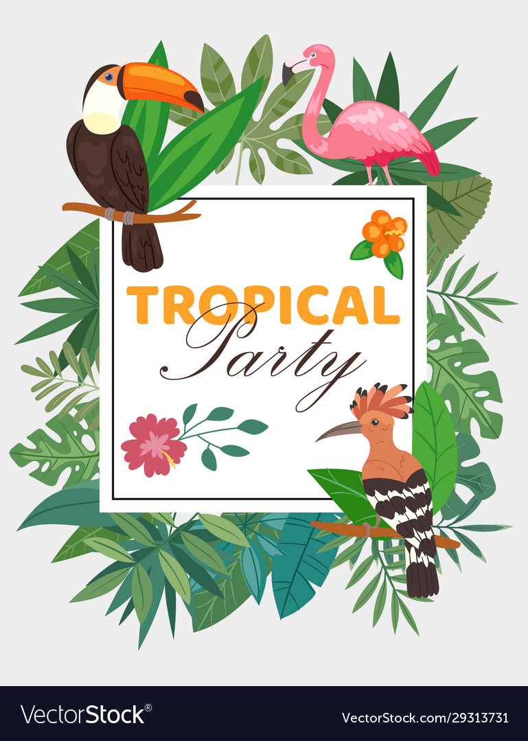 Tropical party poster with birds in exotic nature