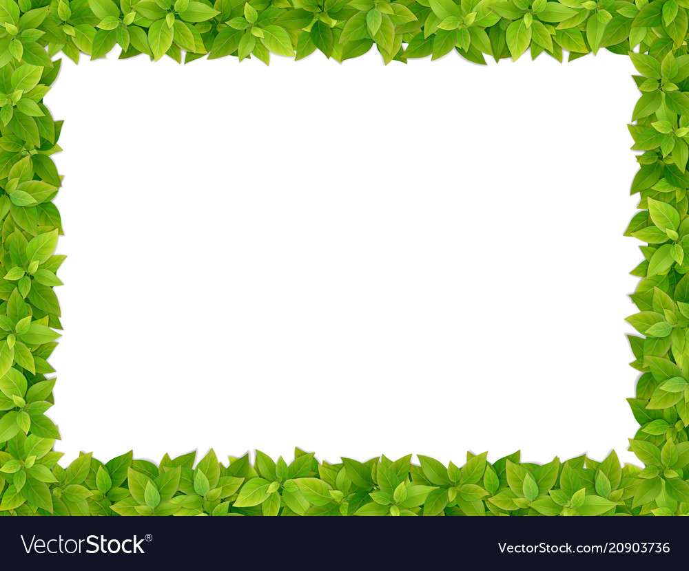 Square frame from fresh green leaves