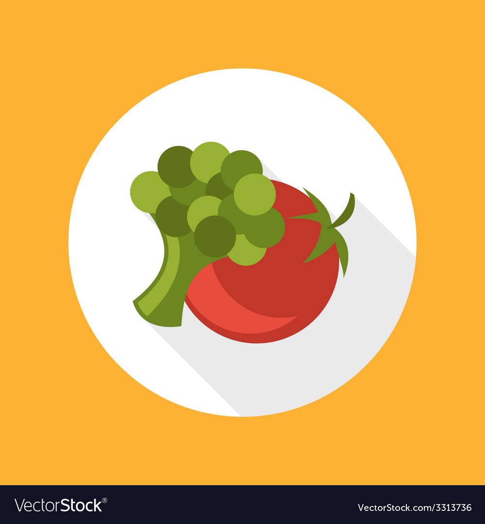 Tomato with broccoli icon vector image