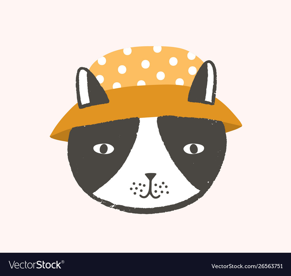 Adorable face or head cat wearing bucket hat