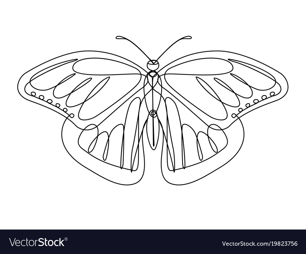 Butterfly continuous line vector image