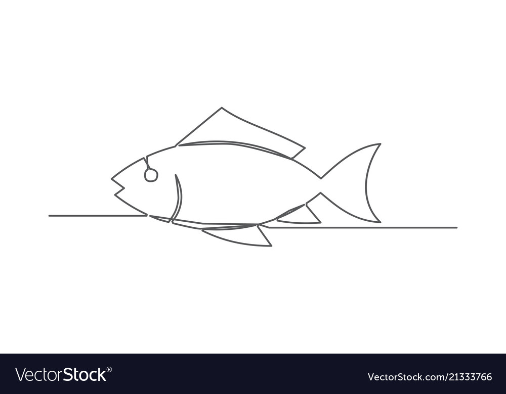 Fish one line drawing