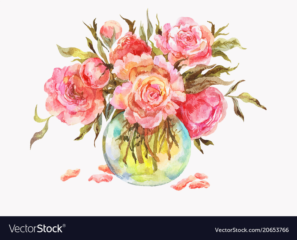 Pink roses or peonies in a glass vase watercolor vector image mightylinksfo
