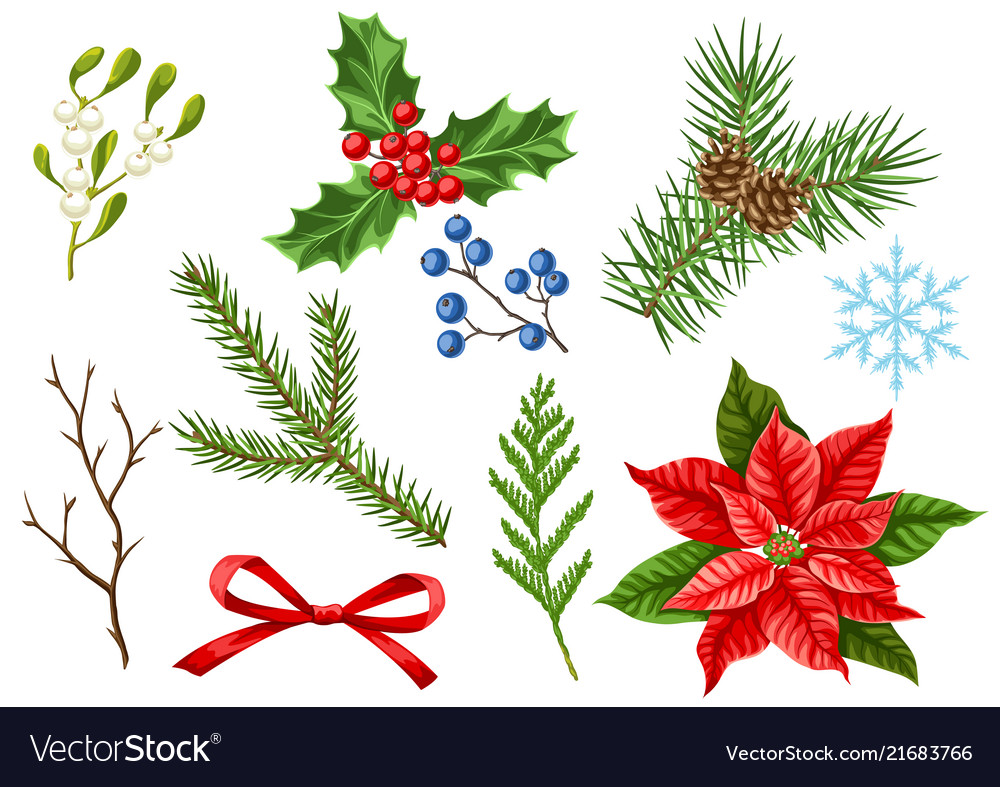 Set Of Merry Christmas Winter Plants Royalty Free Vector