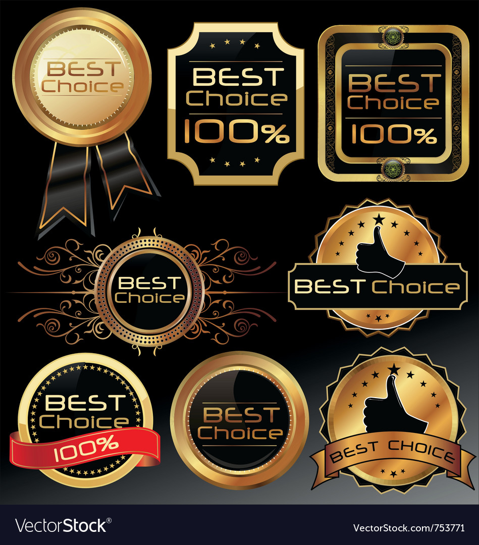 best choice elegant labels royalty free vector image