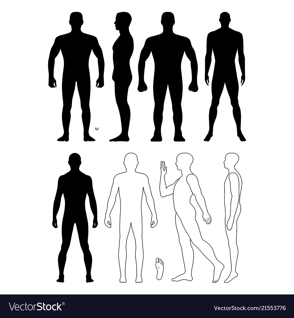 Fashion man body full length bald template