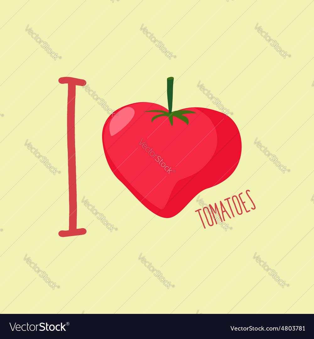 I love tomatoes Heart of red tomatoes vector image