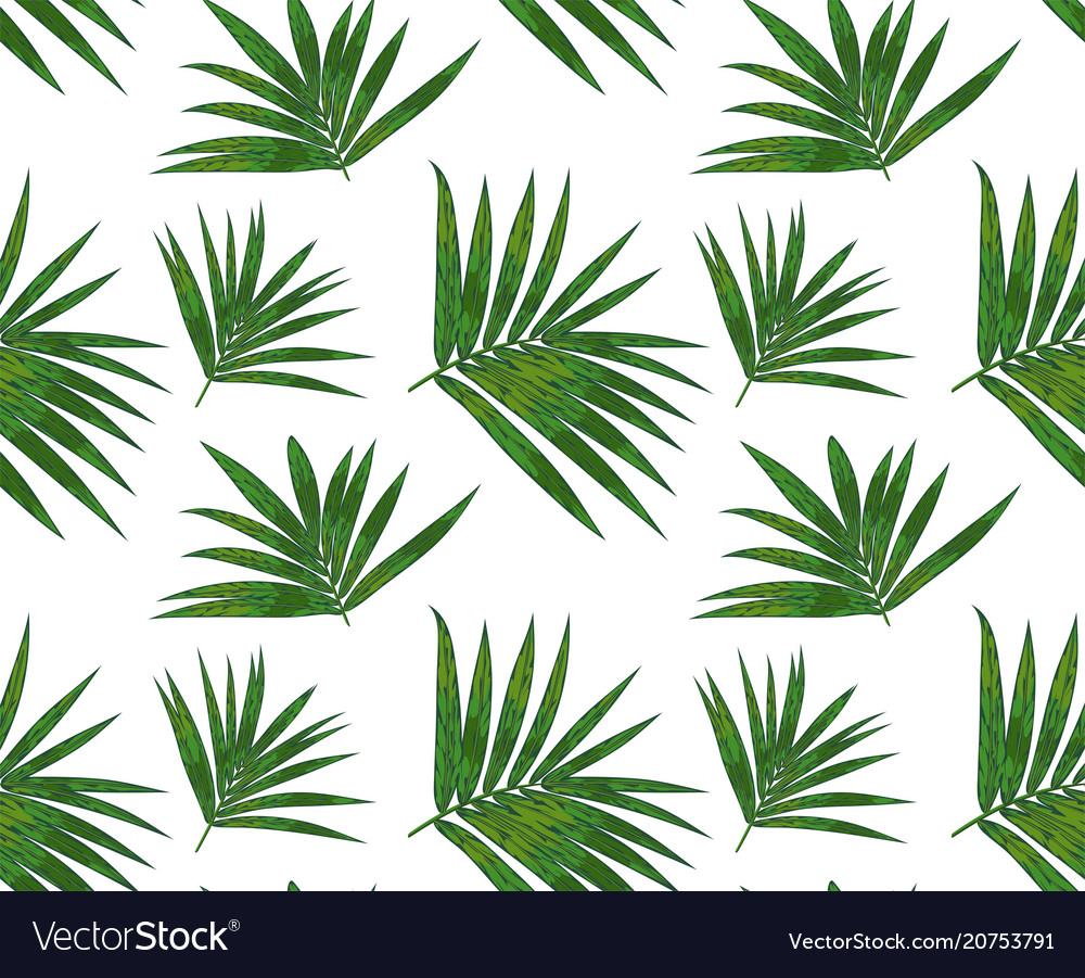 Seamless pattern with kentia palm tropical branch