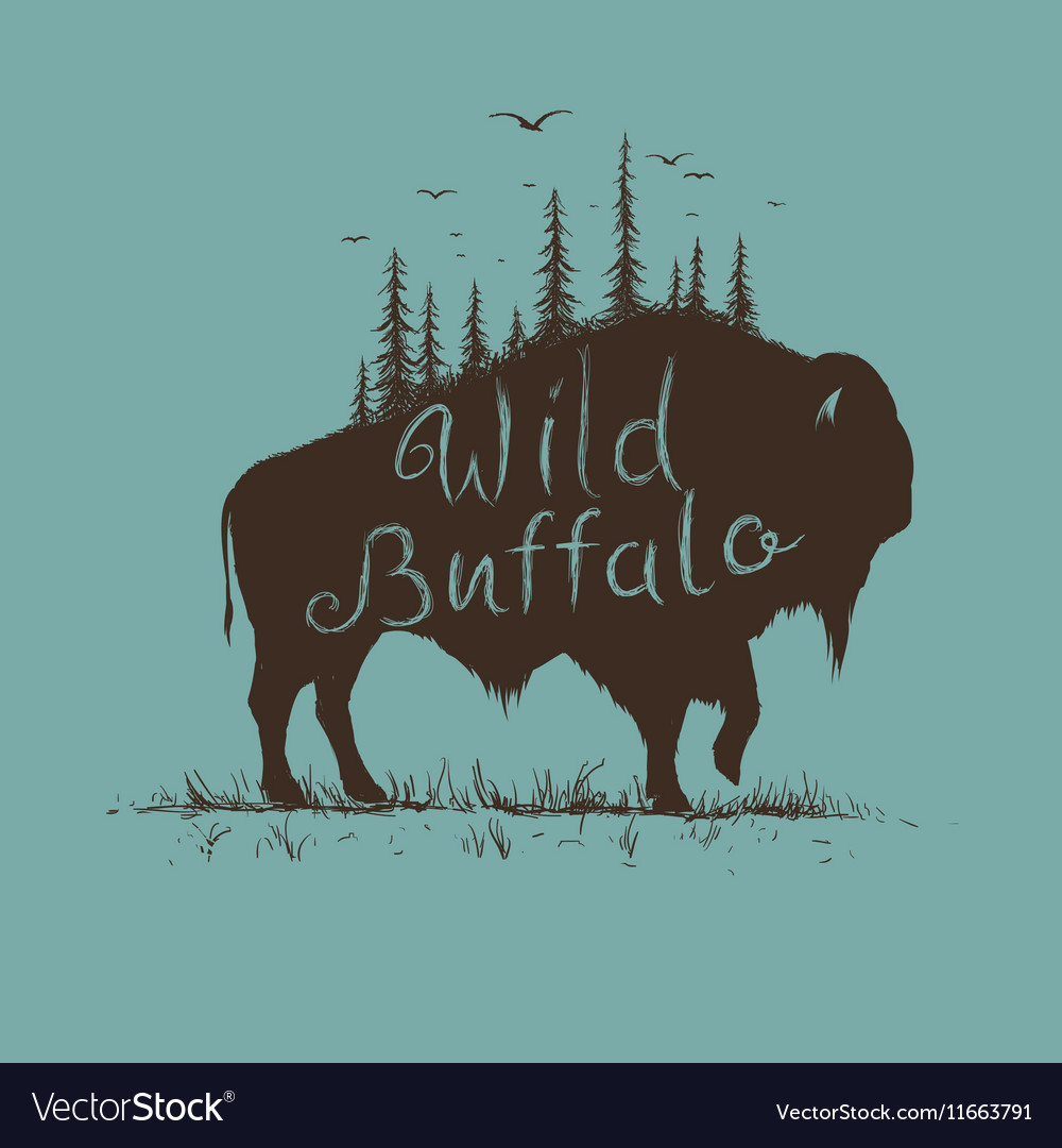 Wild buffalo with forest on him