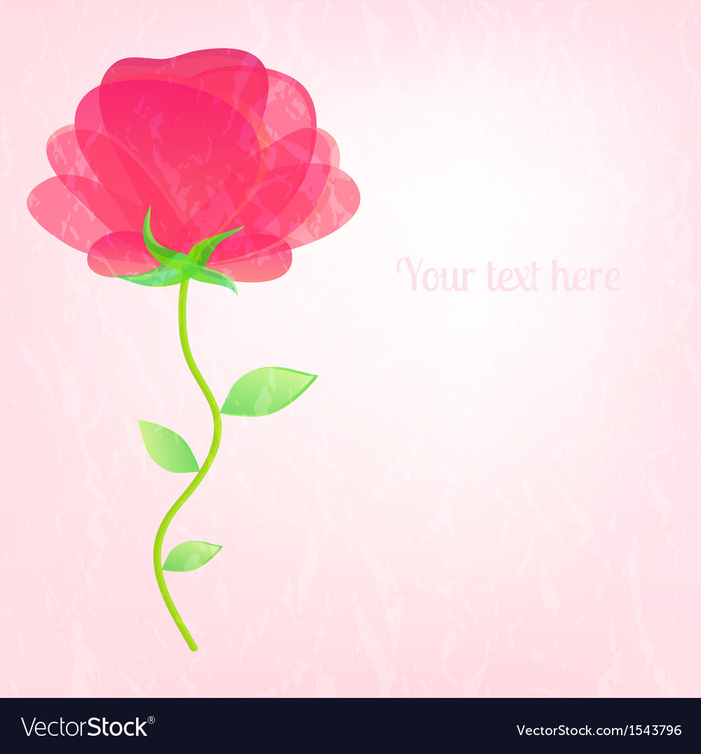 Beautiful card with a flower on delicate rosy