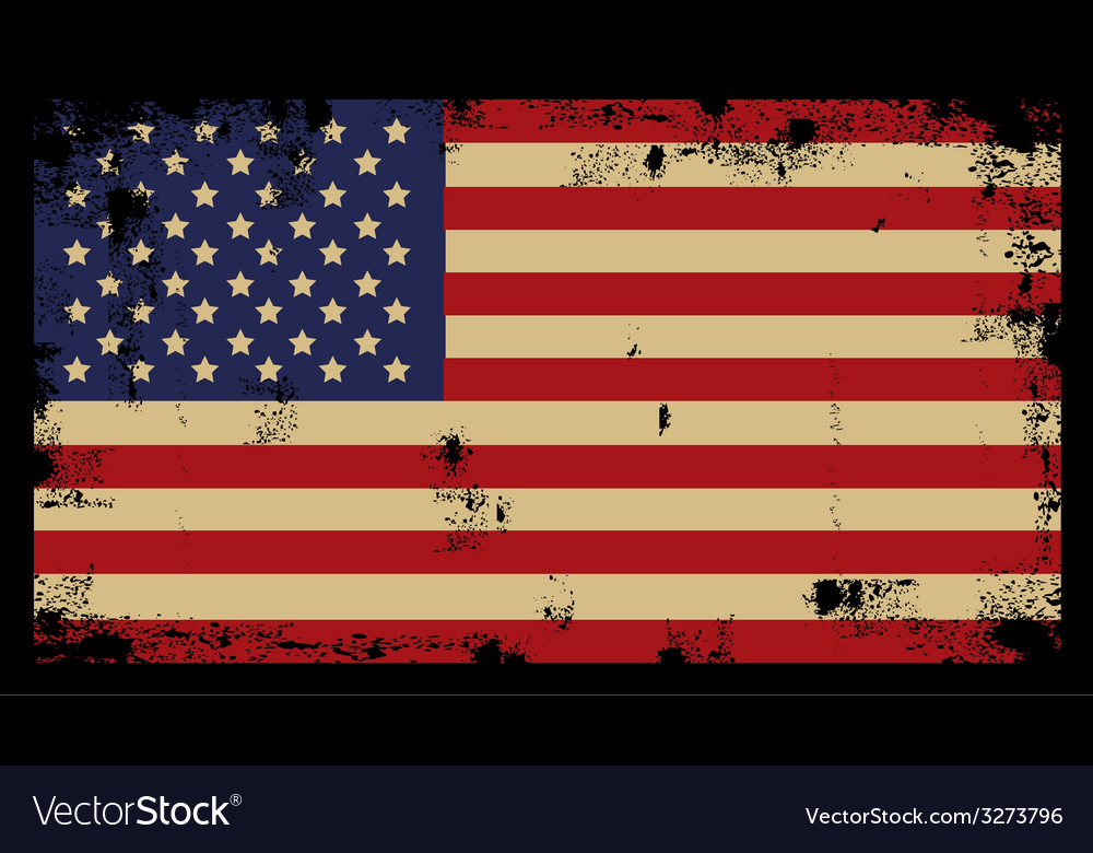 Grunge American Background 2 vector image